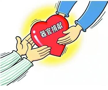一个人献出了爱心对社会的贡献是很大的